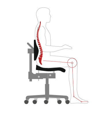 Ergonomic principles and guidelines